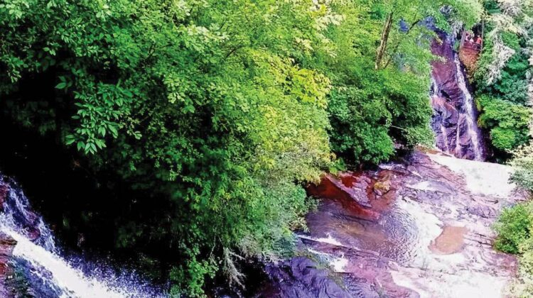 Multiple cascades surrounded by summer foliage