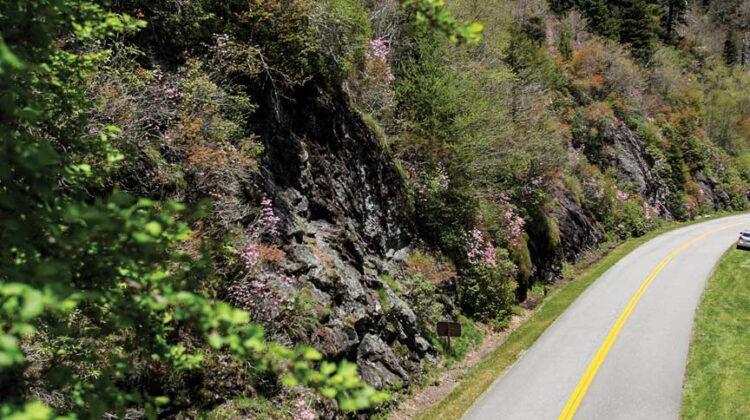 A motorcycle on the Blue Ridge Parkway.